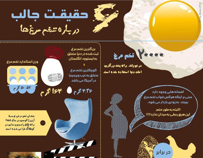 eggfact-infographic