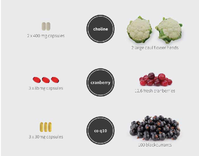 supplements-vs-food-infographic