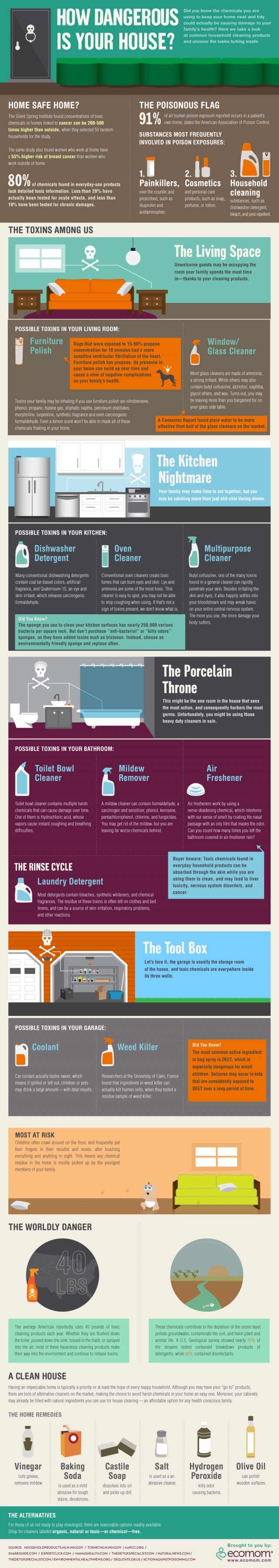 Dangerous-House-infographic