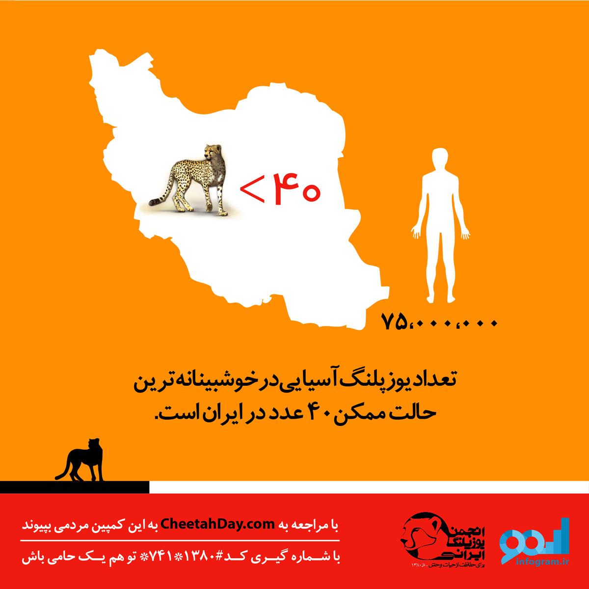 تعداد یوزپلنگ آسیایی ایرانی
