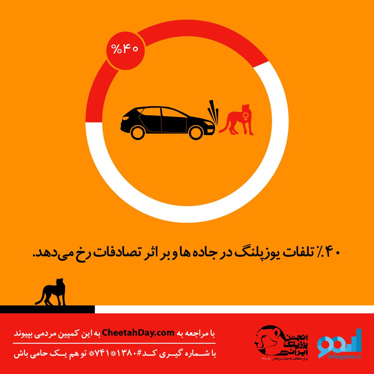 مرگ یوزپلنگ آسیایی ایران